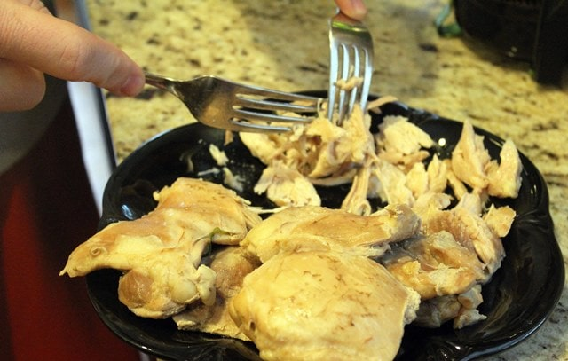 Shred chicken with forks