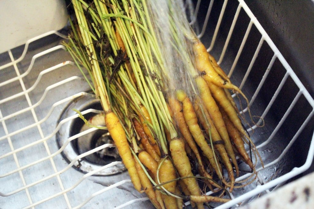 Wash carrots