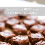 Best ever perfect fudge brownies.