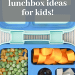 Nut Free Lunch Ideas for Kids No-cook